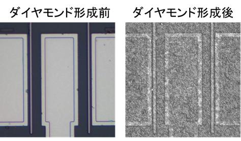 図2 ダイヤモンド形成前後のトランジスタ上面図